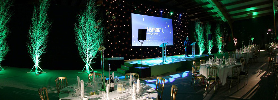 Whole birch trees used on stage as decorations photo 3