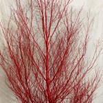 Birch tree painted red