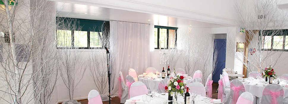 Painted birch trees at a wedding reception