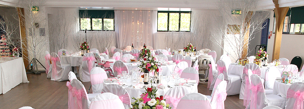 Wedding dining room with birch trees around the room